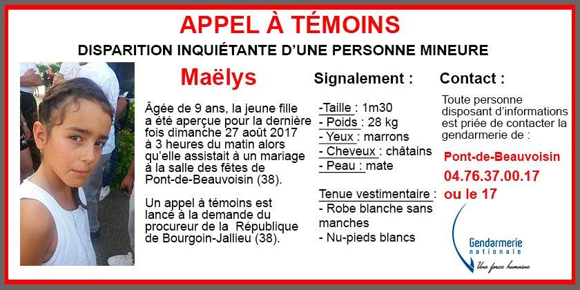 Bambina di 9 anni scomparsa a Festa Matrimonio in Francia