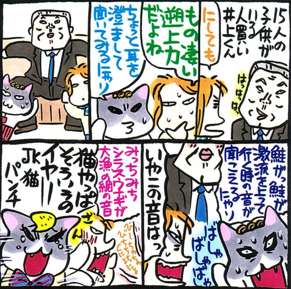 猫 組長 nekokumicho