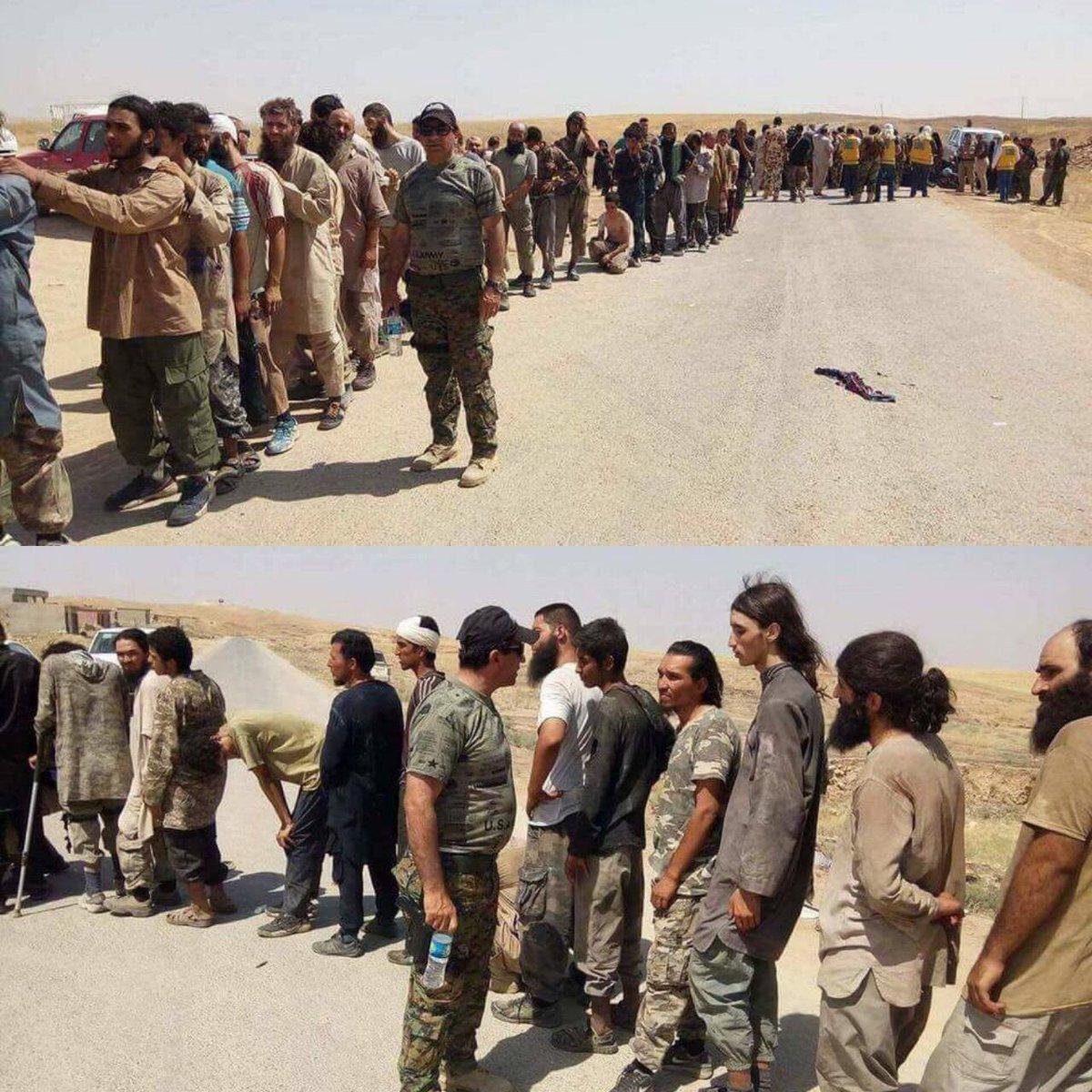 للفترة من 20-29اب عديد من ألقت القبض عليه قوات البيشمركة من فلول #داعش الهاربة من #العياضية بلغ +400 داعشي، فقط ب72 ساعة الماضية عديدهم +260
