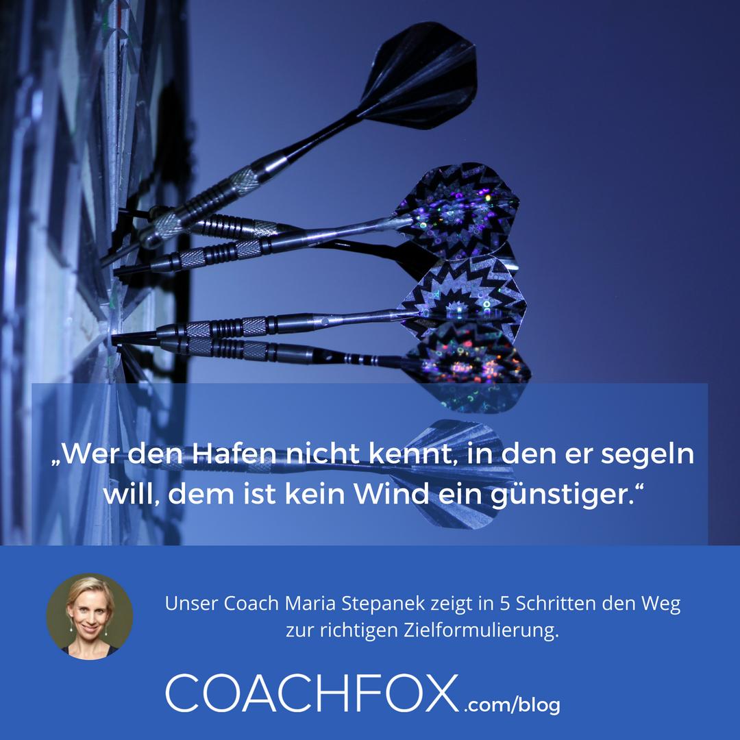 Coachfox (@coachfox_com) | Twitter
