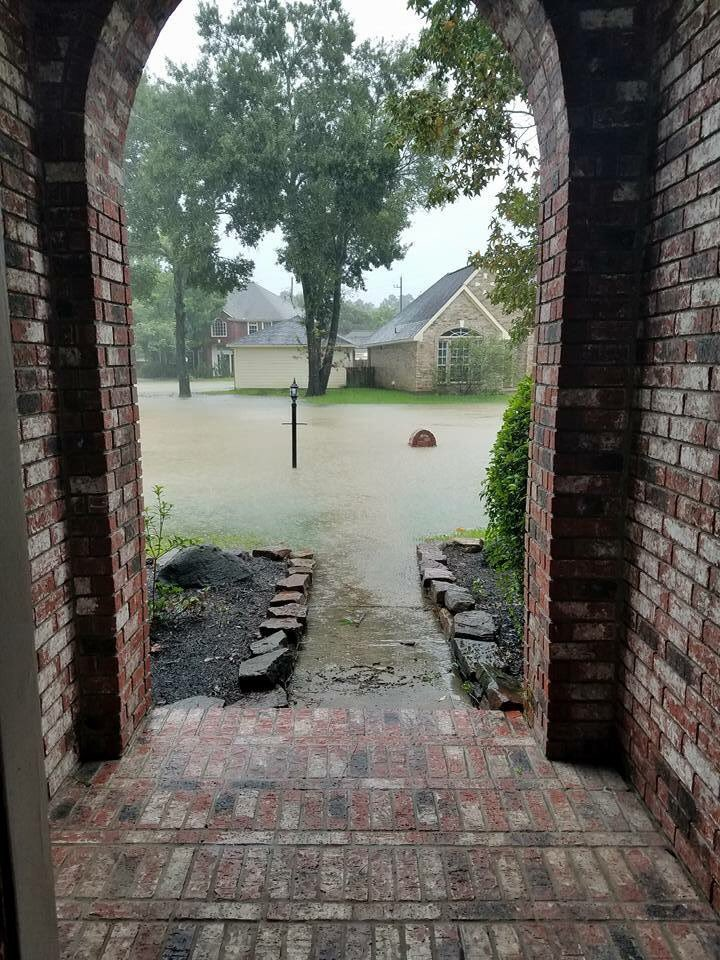 Looking out my front door