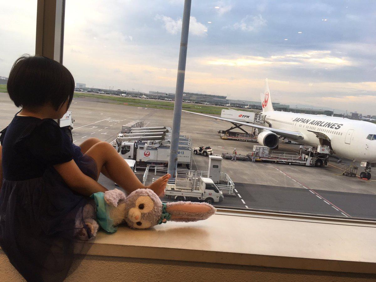"""ビタミンc в twitter: """"約1ヶ月前秋田新幹線こまちで旅行へ。その頃"""