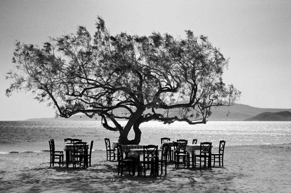 Simon Bode. 'The tree', Greece   rt @Parsifae  https://t.co/vh9yIgkPAy