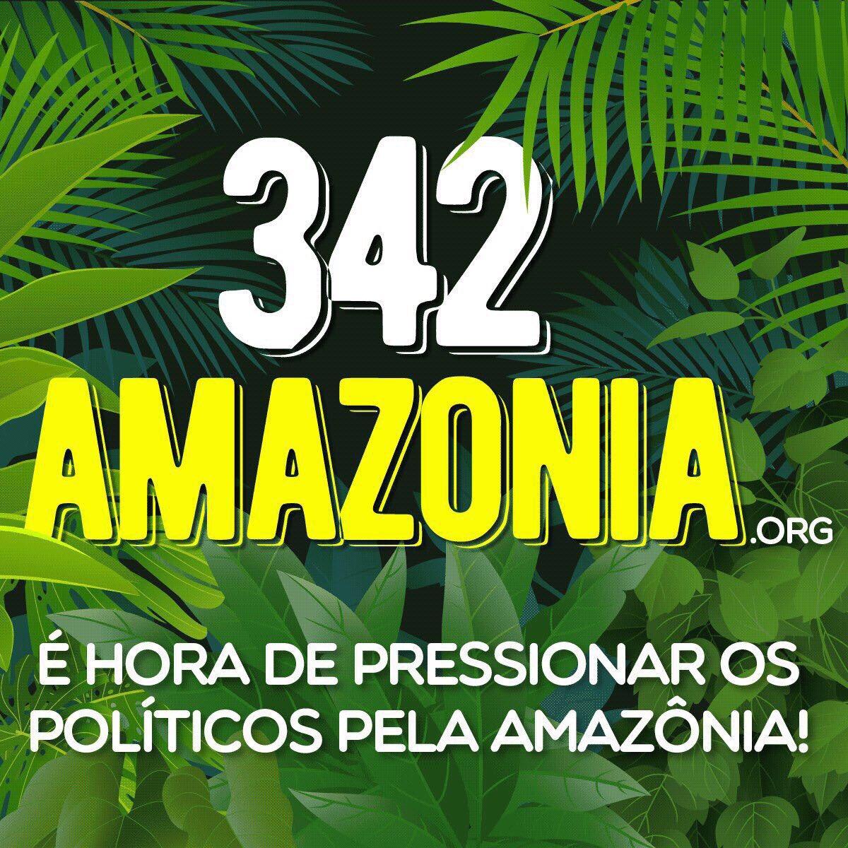 Acesse https://t.co/QR8BpxK7m6 , assine a petição e pressione os parlamentares para salvarmos a Amazônia! #TodosPelaAmazonia #342amazonia