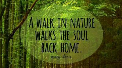 good life quotes on a walk in nature walks the soul