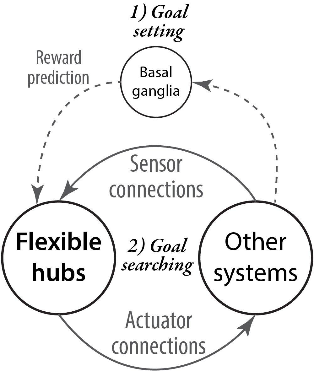 ebook Brainstem Control of