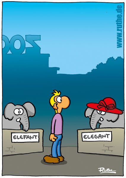 Adam Wolf On Twitter Guten Morgen Eleganter Elefant