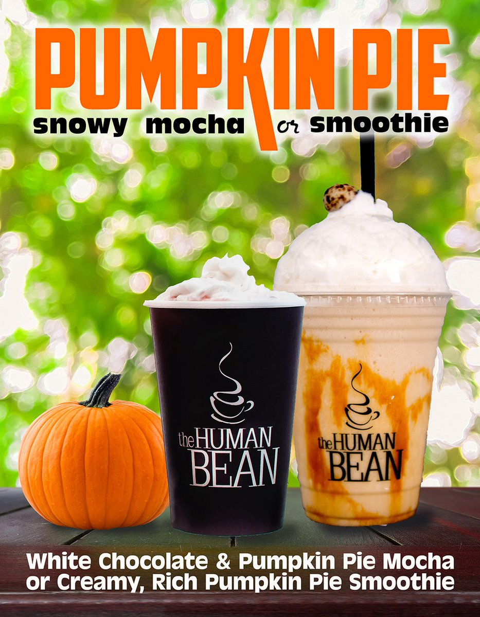 The Human Bean On Twitter Oh Yeah Its Pumpkin Pie Time Baristasknow Thehumanbean