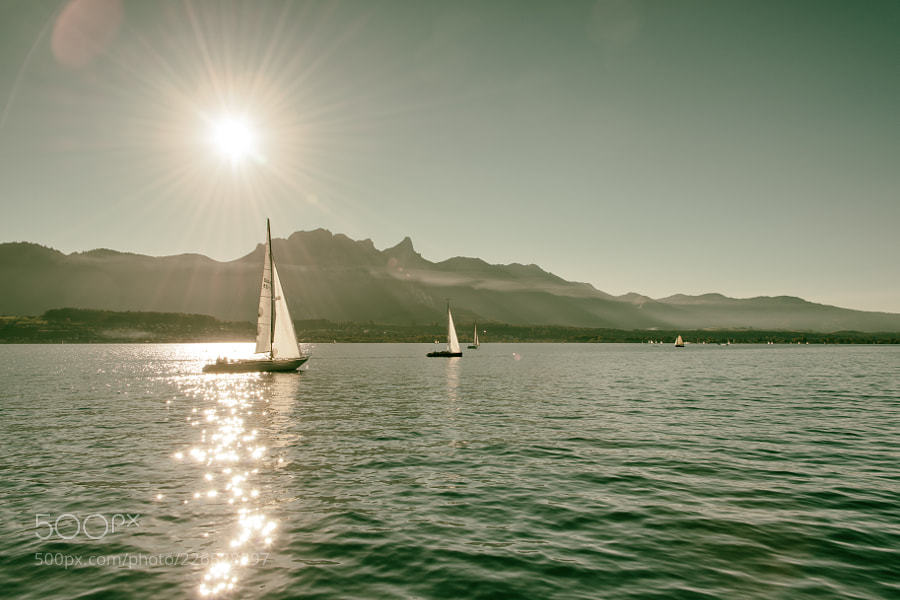 Popular #photography on #500px : Summer day on lake Thun by YvesTscherry https://t.co/xxg3Ub26X0