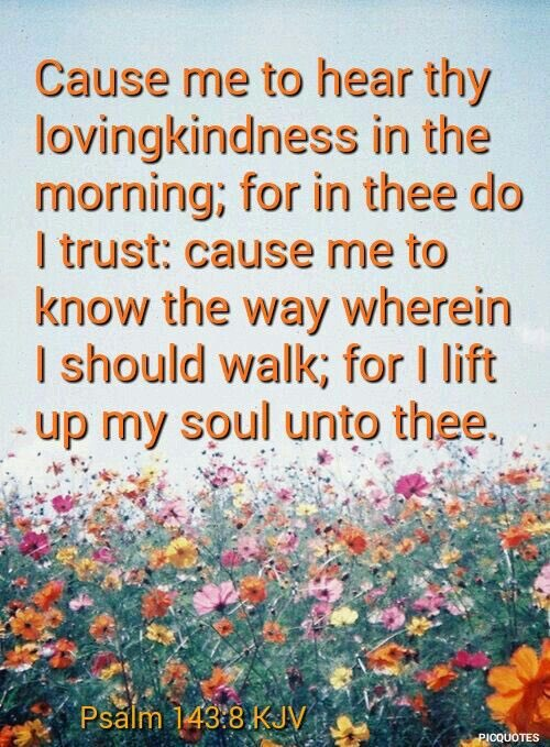 PILLOW🌟#PROMISE💫