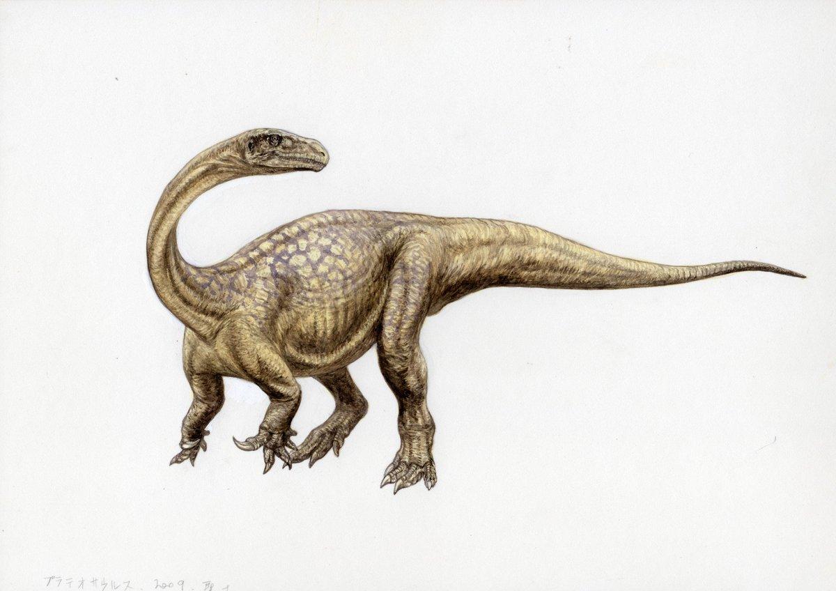 """山本聖士/恐竜復元教/恐竜異説読も♡ on Twitter: """"9月17日日曜日恐竜 ..."""