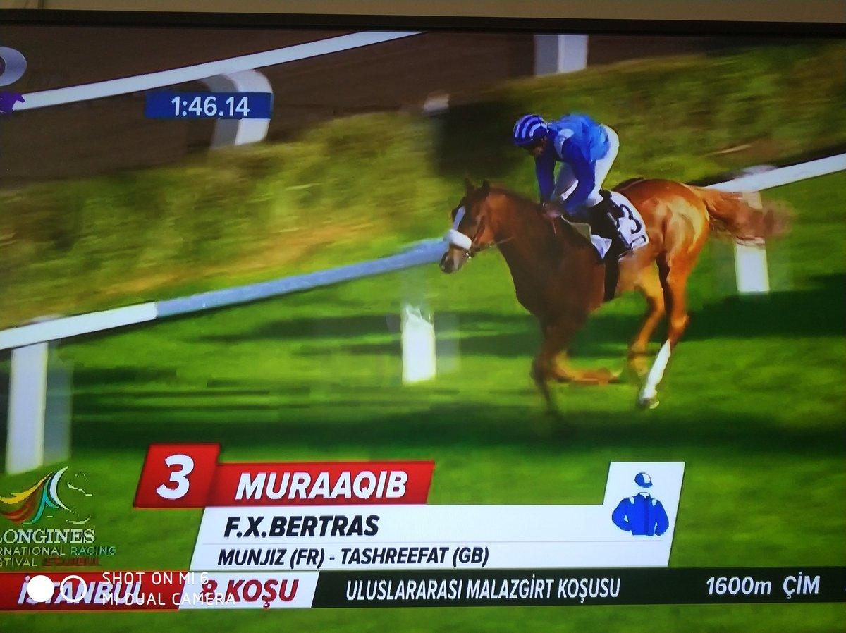 Muraaqib – Malazgirt Koşusu 2017