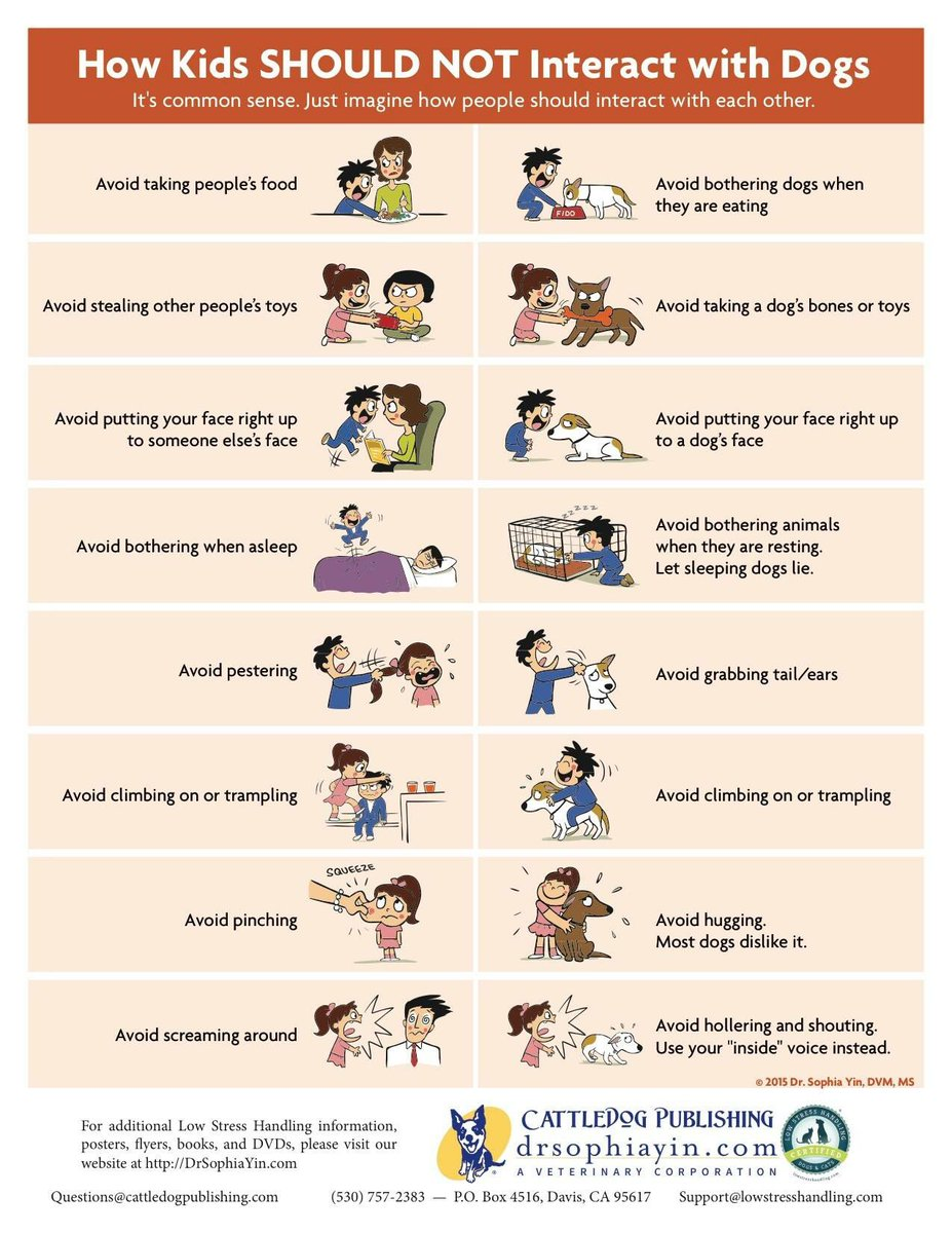 With kids advice