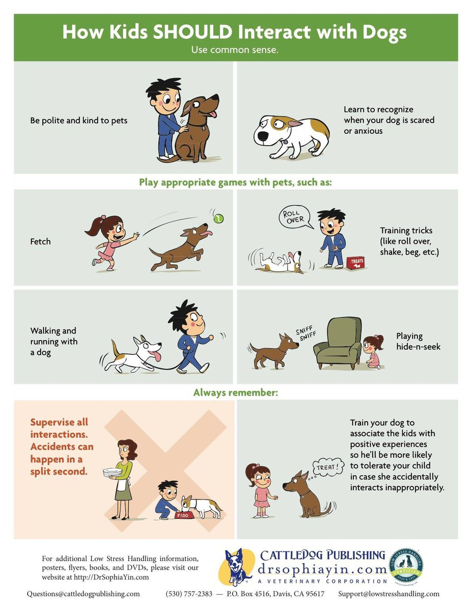 Some great advice for those of you with kids on how they &#39;should&#39; or &#39;should not&#39; interact with dogs  #StaySafe #dogs #DogLover #puppylove<br>http://pic.twitter.com/38YOHbpVRs
