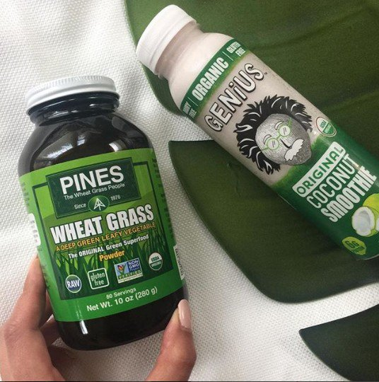 PinesWheatGrass photo