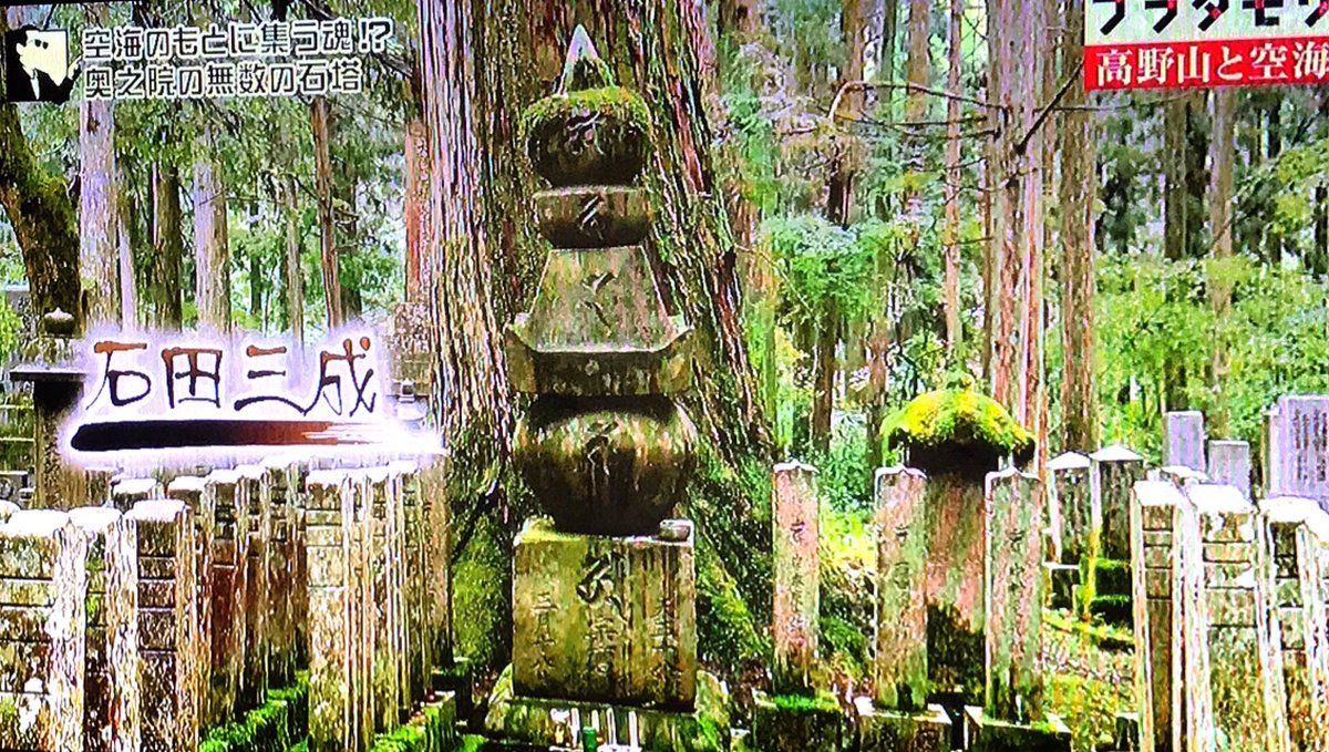 絶賛逃亡中ですが、ブラタモリの高野山スペシャルで儂のお墓が紹介されました。実は大徳寺三玄院以外に、高…