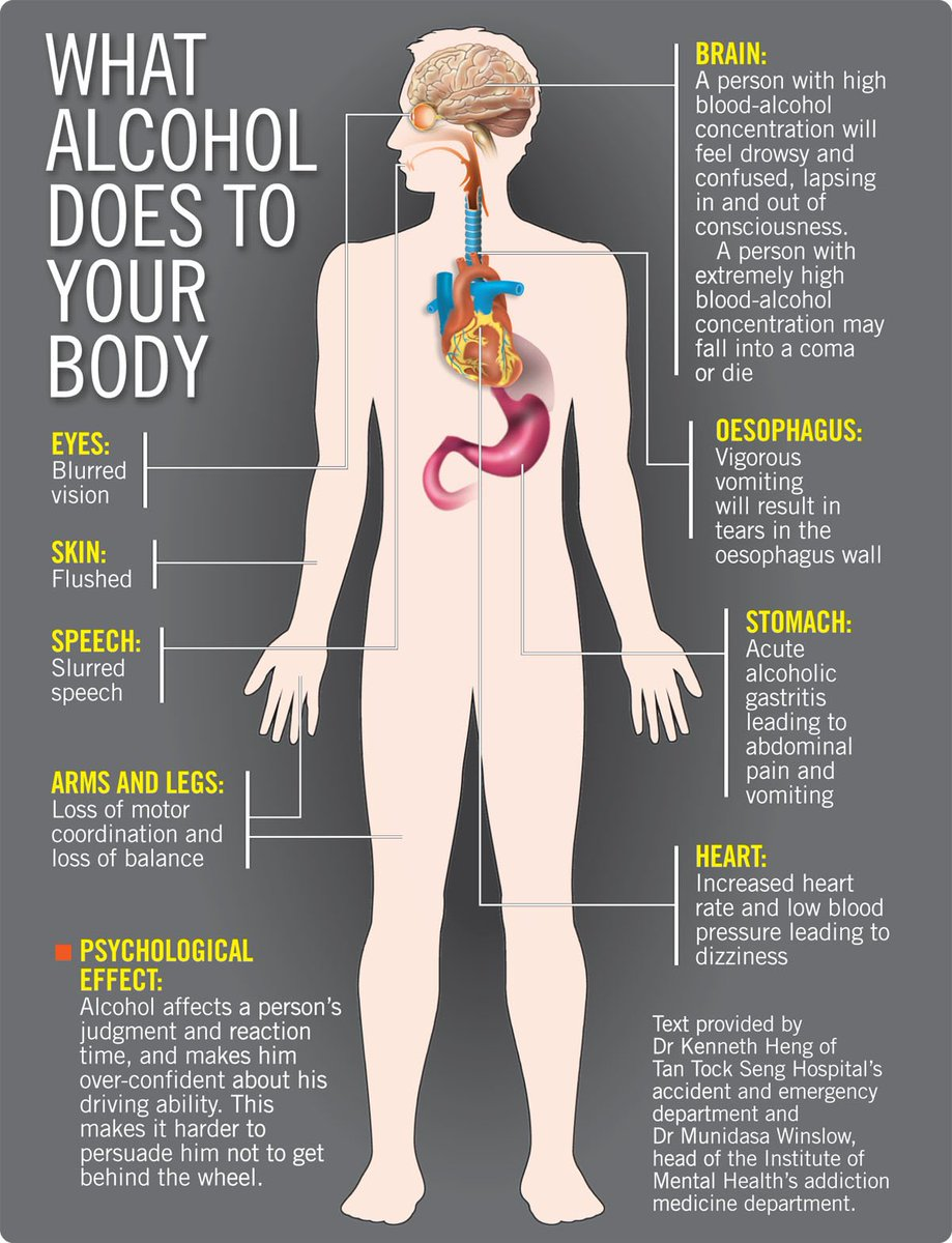 What Alcohol Does To The Body Diagram - Data Schema •