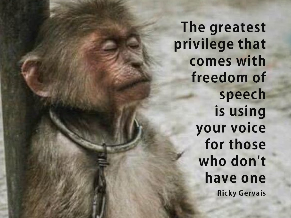 We are #animal advocates fighting for a #CrueltyFree  privileged to &quot;use our #voice for those who don&#39;t have one&quot; @RickyGervais  #Anipals<br>http://pic.twitter.com/uDRJcKDBCs