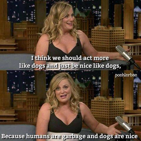 Happy Birthday Amy Poehler! I want to be you when I grow up