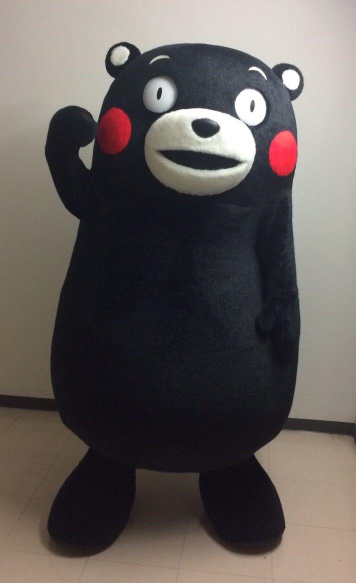 おはくま〜!みなさんも、台風に気をつけて過ごしてはいよ〜!