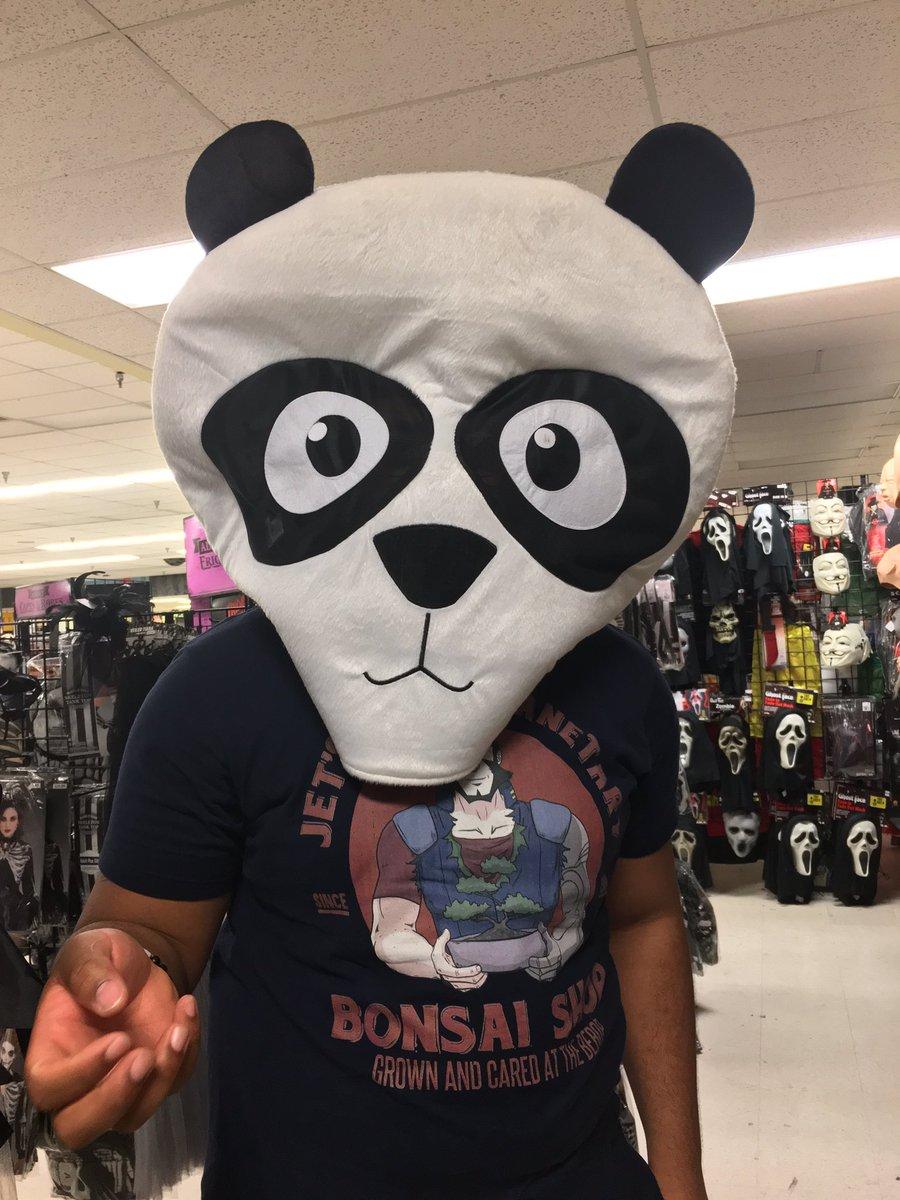 Looking panda