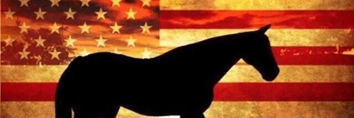 .@JohnBoozman @tammybaldwin #nokill  #noroundups #blm =badmanagement of  PROTECTED #wildhorses @jackreed  Thanks!<br>http://pic.twitter.com/fckHdz8ifd