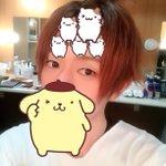 オフ髪の毛ポンパドールたぬきおでこに謎の生き物5匹入る広さ pic.twitter.com/P1uV…