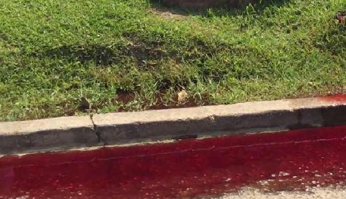 Из похоронного бюро в США потекла река крови