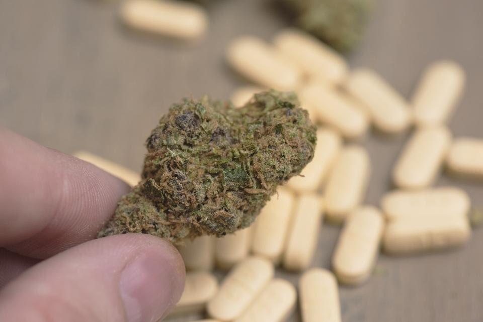 Why marijuana compounds could eventually replace anti-anxiety medication  http:// on.forbes.com/60108FThG  &nbsp;    #MedicalMarijuana #Health #CBD $GWPH #VBIO<br>http://pic.twitter.com/M6X0gXLcZS