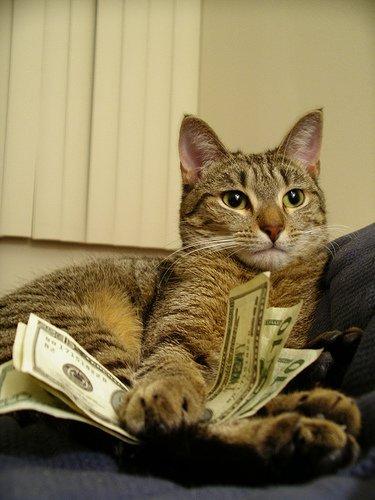 online cash advance lenders