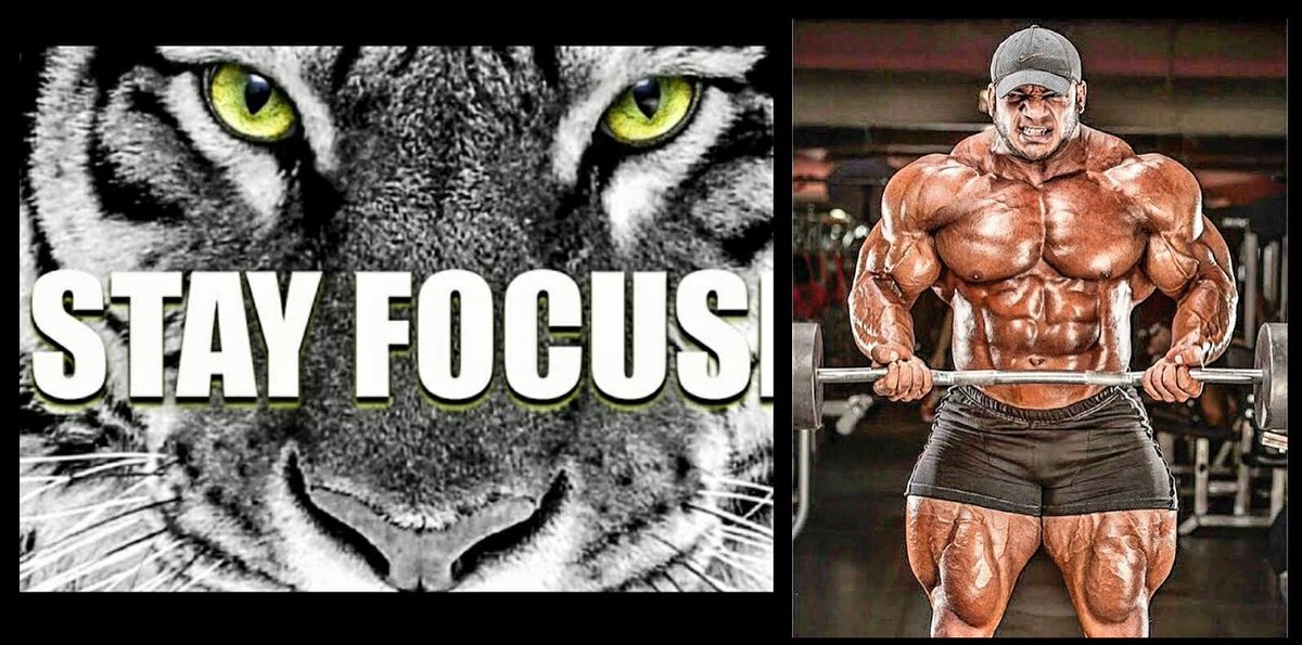 BIG Ramy  #BigBoyZclub #gym4life #fitquotes #bodybuilding #supps #nutrition #fitlife #amatteroffit #celebrity #gym #fit #cfcrowdfire<br>http://pic.twitter.com/Ml3cZpcaVD