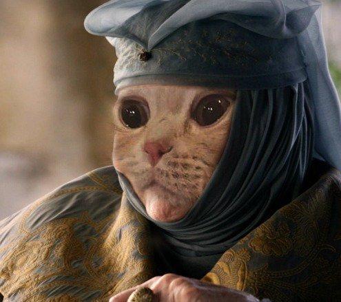 В Сети появились фотографии животных в образе героини сериала «Игра престолов»