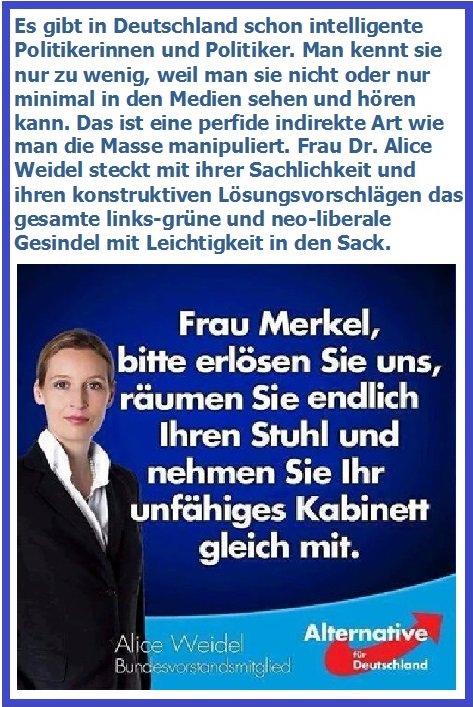 Alice Weidel On Twitter Meine Stellungnahme Zum Verlassen Der