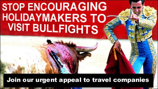 Holidaymakers looking for