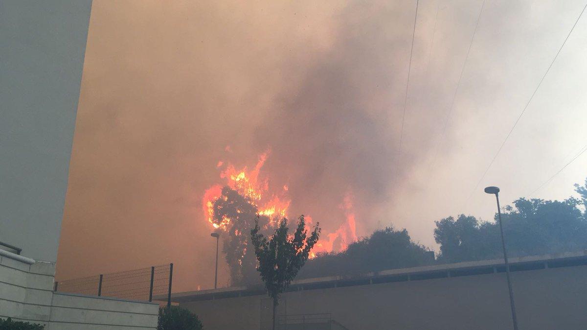 ⚠️ Feu de garrigue à #Grabels près de #Montpellier : les pompiers toujours en intervention, toutes les photos 👉 https://t.co/wivaoYdBy5