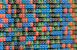 test Twitter Media - Universal sequencing may detect more potentially clinically significant heritable mutations #cancer https://t.co/2NntFEg1wS #PMWC18 https://t.co/sPmMM1DbaC