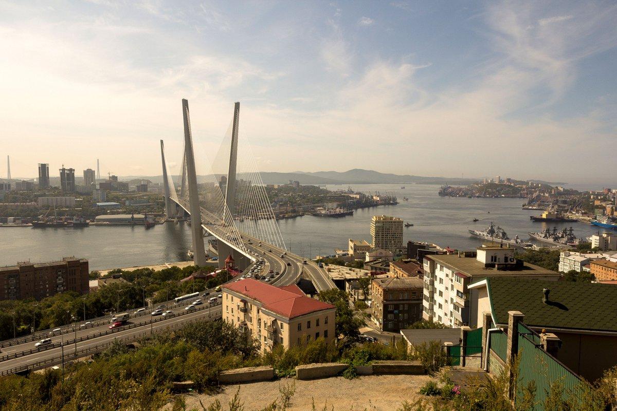 Крымские пауки фото и описание рада
