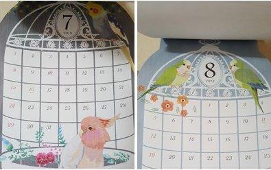 test ツイッターメディア - 来年のカレンダー可愛いよ(*´艸`)♡ クルマサカオウムやオキナがいるよ! ほかにもヨウムなど…( *´ノд`)コショショ   #セリア #2018鳥さんカレンダー https://t.co/fHh5sJ8e6k