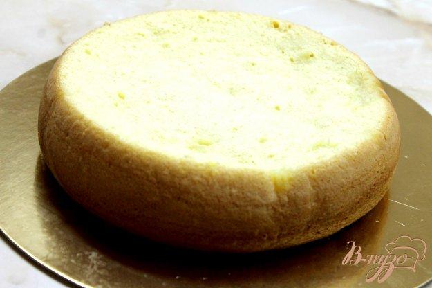 Рецепт классического бисквитного торта