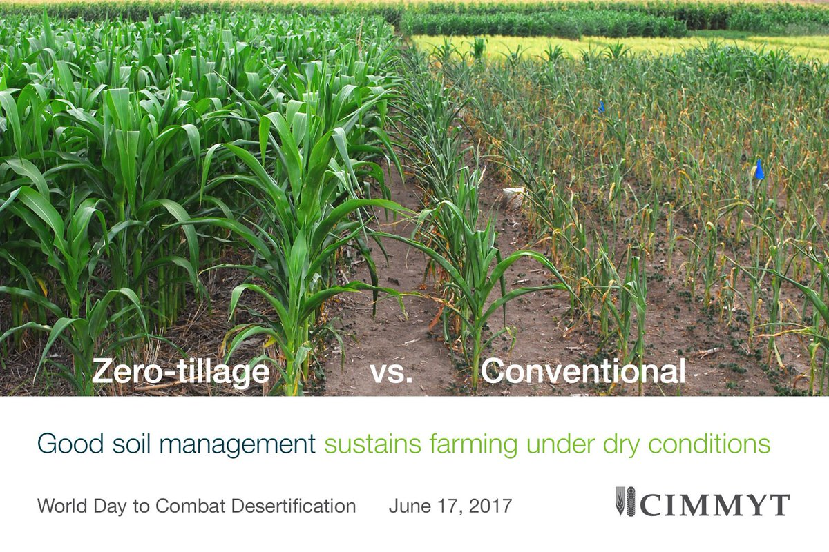 Sustainable agriculture maintains soil health and improves yields even during drought. #UNCCDCOP13 https://t.co/Dympwt4VjZ