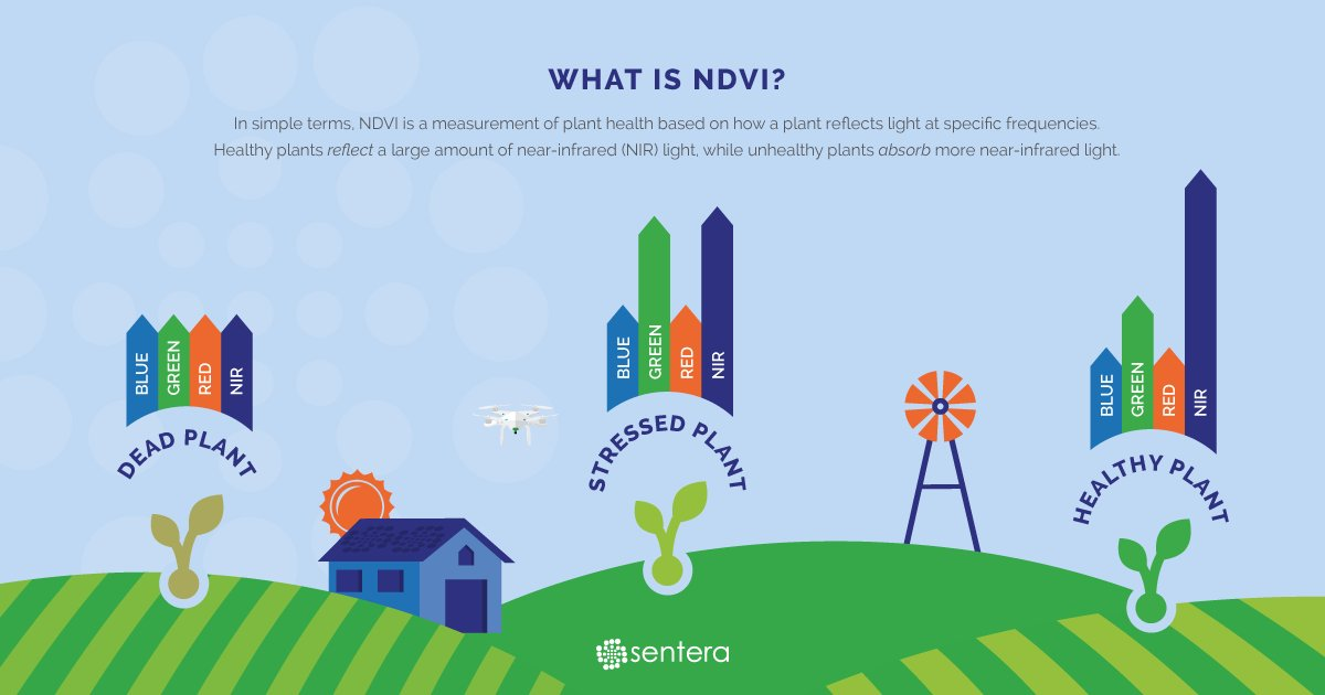 #Infographic: What is #NDVI? #drones #PrecisionAg<br>http://pic.twitter.com/sEpB4bGTfT