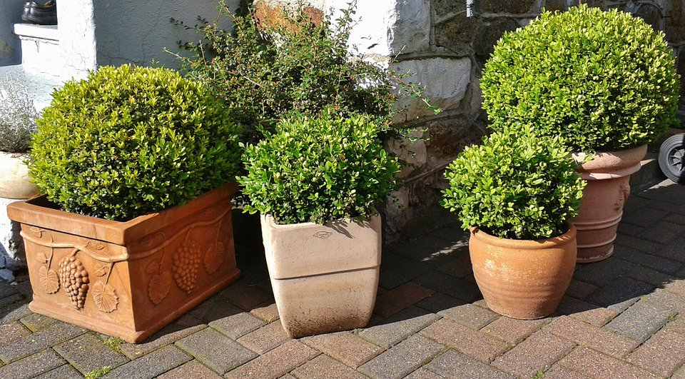 Commercetools Us garden design oxford garden design oxford
