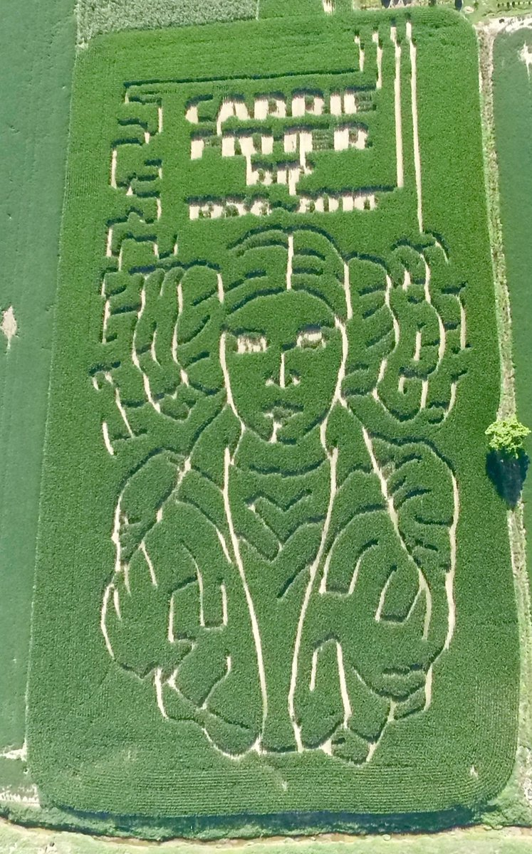 Fazendeiro faz labirinto de milho em homenagem à atriz Carrie Fisher, de 'Star Wars' https://t.co/3tKKwxSCCW #StarWars #G1