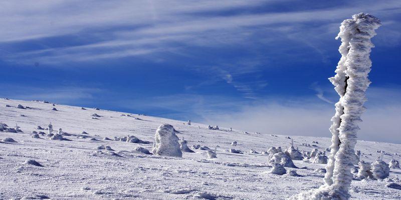 Ледниковый период скачать