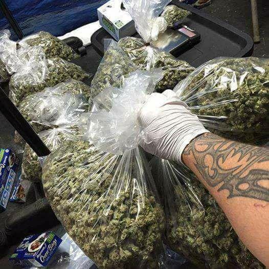 LEGAL WEED SELLERS (@WeedSellers) | Twitter
