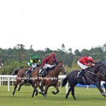 7th win for 6yo g SUEDOIS (Le Havre) @DannyTudhope in 8f G2 Boomerang Stakes @LeopardstownRC today for @omeararacing