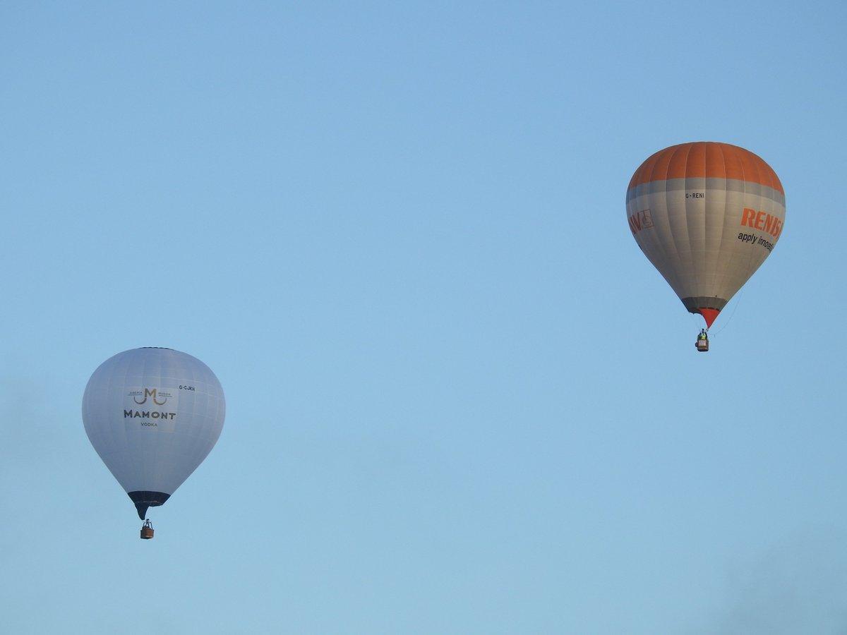 g reni balloon greni balloon twitter