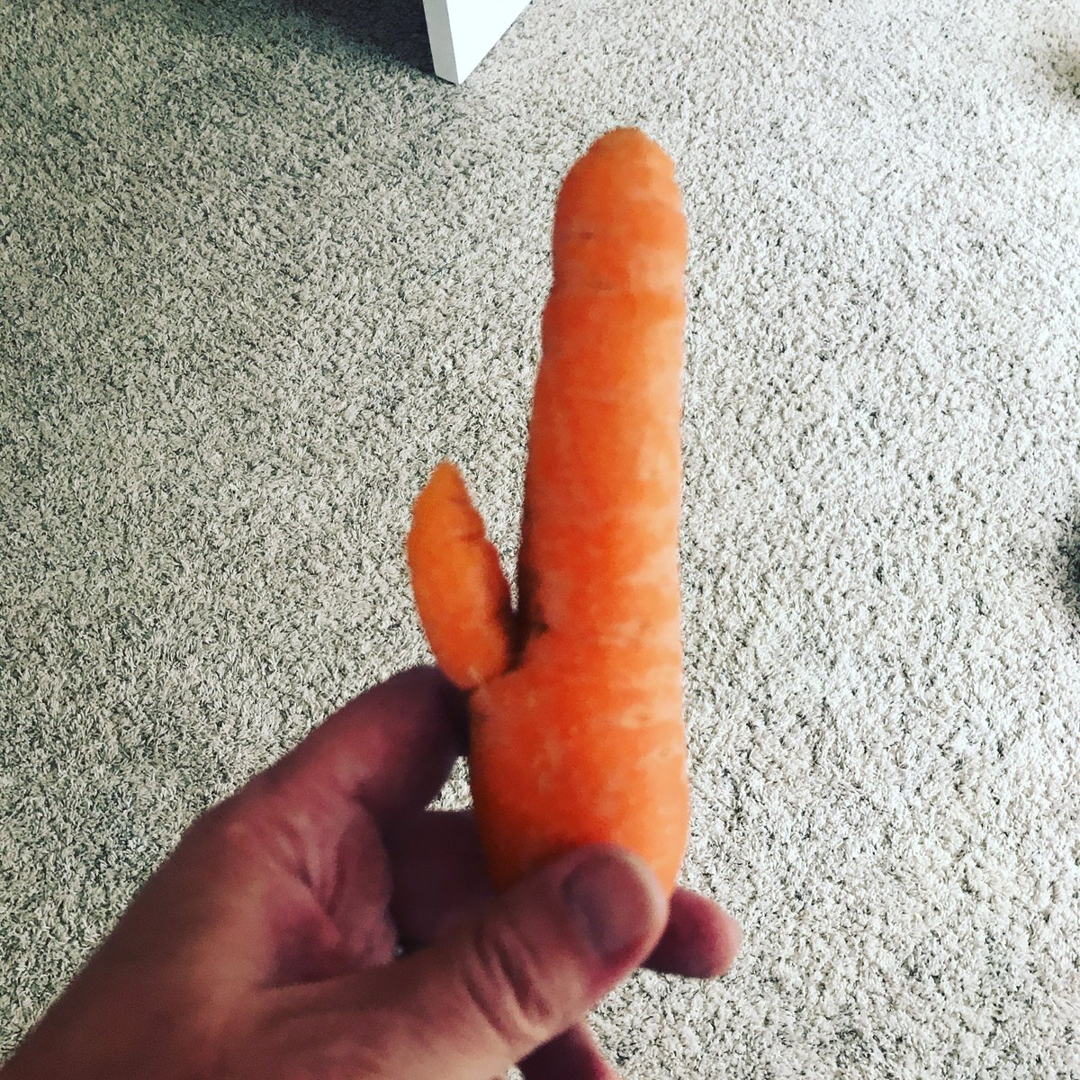 When my home grown carrots can be sold at sex shop! #dirtycarrots https://t.co/E9PveLLoId