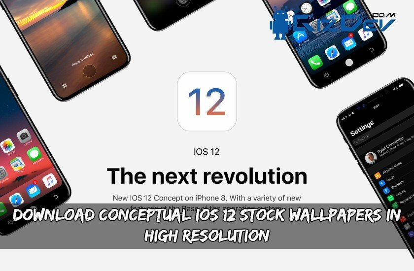 download borrowing court