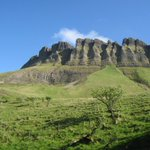 Discover this 5k forest walk through the Benbulbin (Gortarowey) Looped Walk https://t.co/uJM1K8tTzA #sligowalks #sligo